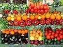 бизнес на овощах