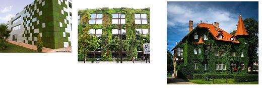 озелененные фасады