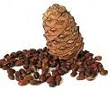переработка кедроывх орехов бизнес