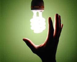 бизнес на лампочках