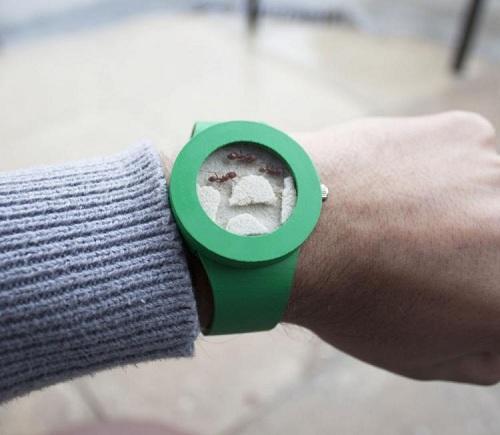 часы с муравьями