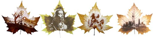 картины на листьях