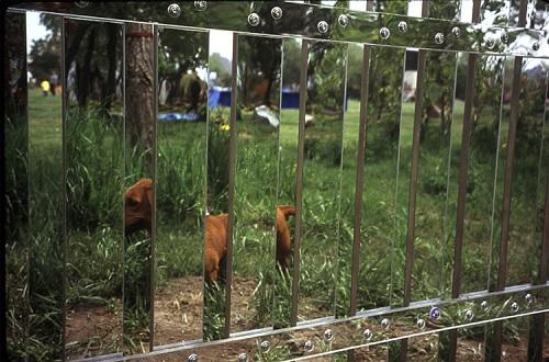 креативный зеркальный забор
