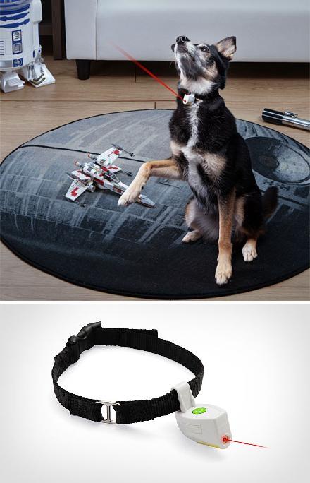 ошейник с лазерным указателем для собаки