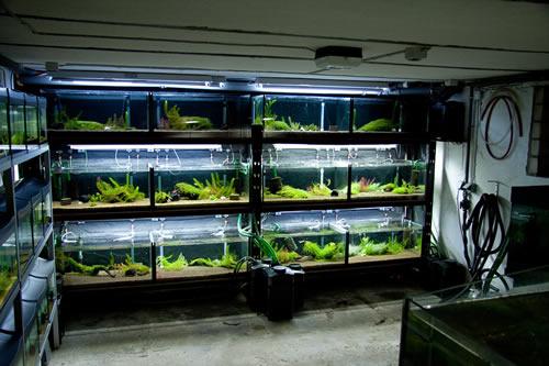 Оборудование для выращивания креветки 835