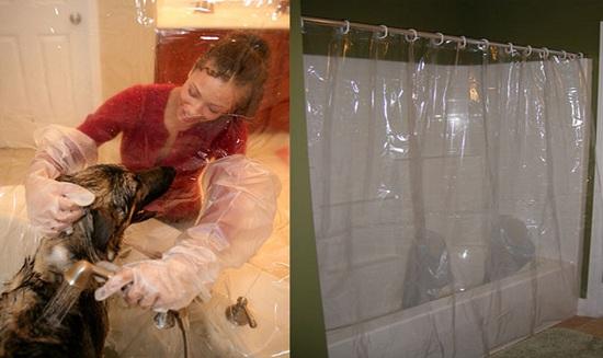 штора для мытья собаки как бизнес идея