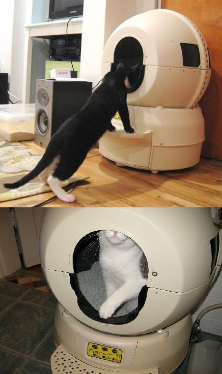 умный туалет для кошки