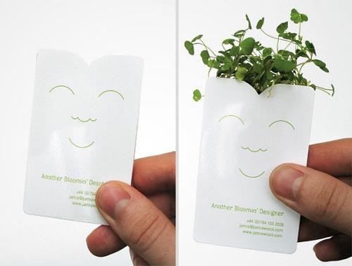 визитка с семенами